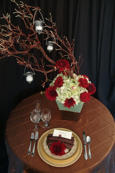 "photo 13 of ""Dress My Chair"" Party Rentals & Fine Linens"