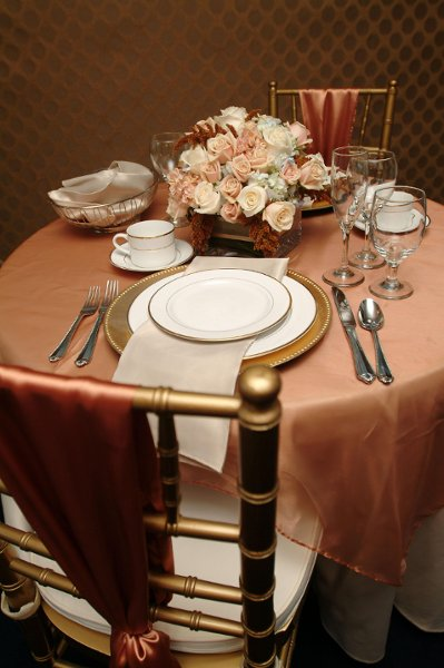 "photo 9 of ""Dress My Chair"" Party Rentals & Fine Linens"