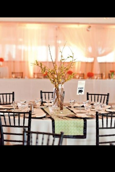 "photo 35 of ""Dress My Chair"" Party Rentals & Fine Linens"