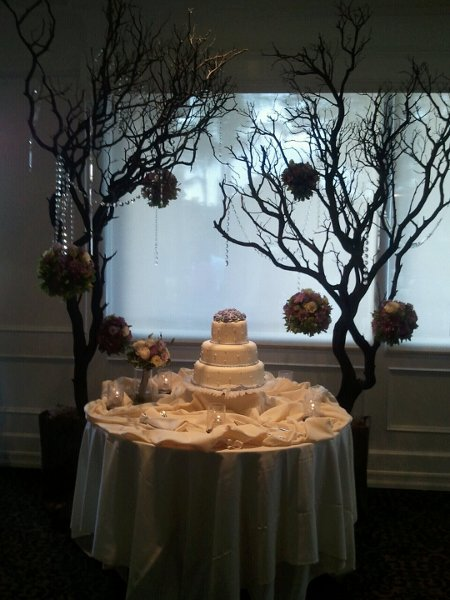 photo 86 of Amy Ling Events
