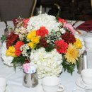 130x130_sq_1350060392904-centerpieces0122