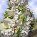 130x130 sq 1273535332398 flowercascade