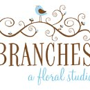 130x130_sq_1299099458272-brancheslogolarge