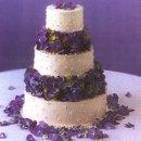 130x130 sq 1299023136800 purpleflowers