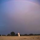 130x130 sq 1456714905187 rainbow