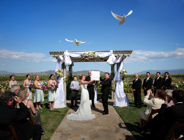Angel Wings White Dove Release Temecula Ca Wedding Other