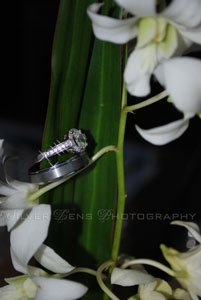 photo 11 of Silver Lens Photography