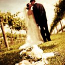 130x130 sq 1272063140092 wedding968