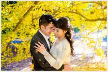 220x220 1451982157 ccb02b0fb2ec3e4f 1448319381014 dianarobert engagement arcadia arboretum los angel
