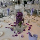 130x130 sq 1431648412477 deep purple orchid in medium cylinder