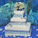 130x130_sq_1295302285692-weddingcakebluesilverribbonlongbeachaquarium