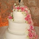 130x130_sq_1295302332131-weddingcakefreshflowerscaketop