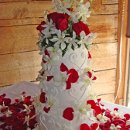 130x130_sq_1295302428697-weddingcakesweetheartsredflowerpedals