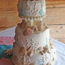 130x130_sq_1295302442260-weddingcakewithseashells