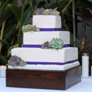 130x130_sq_1407444406950-succulent-wedding-cake