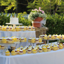 130x130_sq_1407446439055-cupcakes-outdoors-lemon-raspberry-wedding