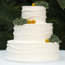 130x130 sq 1415301465391 wedding cake white succulents green modern