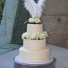 220x220 sq 1321733607946 weddincakeflowers
