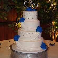 220x220 sq 1335358187965 bluehydrangeaweddingcake