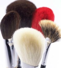 220x220_1274557719889-makeupbrushes