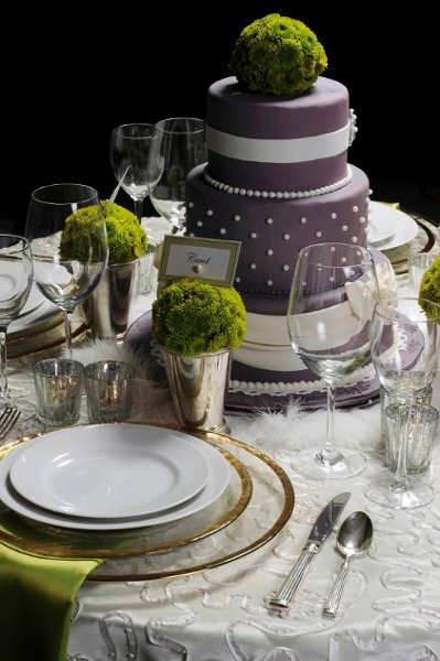 photo 84 of T E Couture Linens & Tabletop