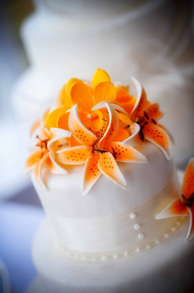 1358807507387 Sugarflowers1 Danvers wedding cake
