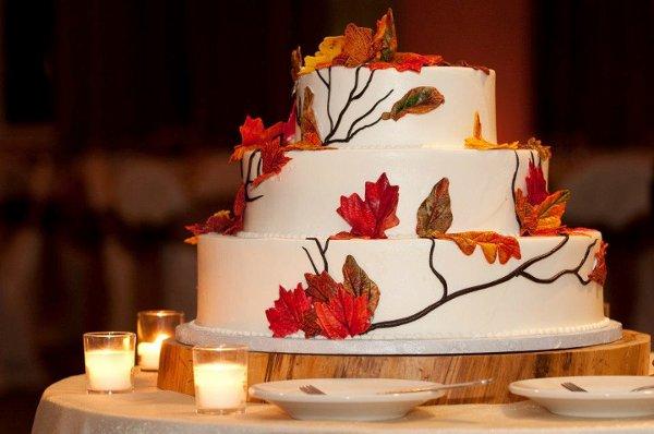 1358807539510 Fall Danvers Wedding Cake