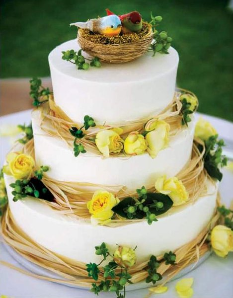 1358809454442 KnotVanMikeBirds Danvers wedding cake
