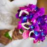 96x96 sq 1382393685521 cescaphe weddings philadelphia 14 16 56 copy