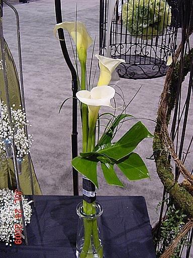 1250363603322 Kcwbs070931 Blue Springs wedding florist