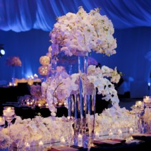 Trias Flowers and Events
