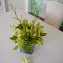 130x130 sq 1366229056272 cymbidium orchids1