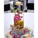 130x130 sq 1366229695323 smtropicalorchidcenterpieces201010071245538