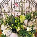 130x130 sq 1194457505521 birdcage