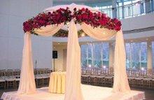 220x220 1233768633328 wedding20