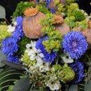 130x130_sq_1227936012156-flowerspyphotography41