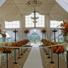 220x220 sq 1391551725254 emceedj newcastle orange weddin