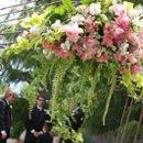 130x130_sq_1252448285638-weddingpictures094