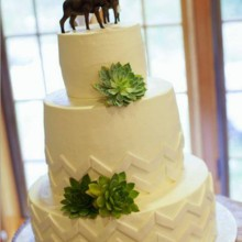 220x220 sq 1414420740332 wedding cake 1