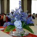 130x130 sq 1384539795011 blue hydrangea delphiniu