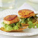 130x130 sq 1447704568000 1212holiday appetizers scallop avocado tostados m