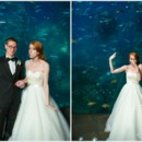 130x130 sq 1392420988739 seattle aquarium wedding 854