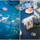 130x130 sq 1392420998625 seattle aquarium wedding 800