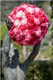 220x220 1304023872017 flowerball