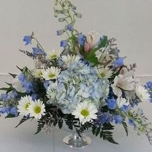 220x220 sq 1474915864 a6df28e84501d81a 1474912649331 blue delphinium and white rose pedistal centerpiec
