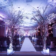 220x220 sq 1468945585148 wedding ceremony in salon 1  farahi 2016