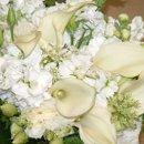130x130 sq 1201871715113 flowers706004