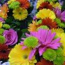 130x130 sq 1201871809300 flowers706028