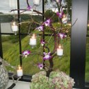 130x130 sq 1255197140303 weddingflowers075