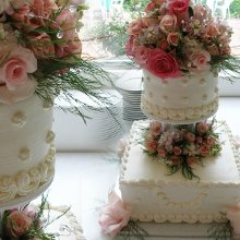 220x220 sq 1340290126989 weddingcake